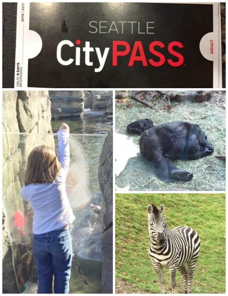 seattle-citypass-zoo
