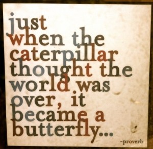 be a butterfly