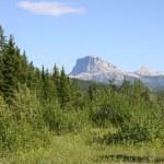Glacier NP Chief Mountain