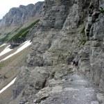 Glacier NP Highline Trail