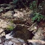 Great Smoky Mountains NP Laurel Falls
