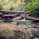 Great Smoky Mountains NP stream