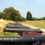 Colonial NHP Grand American Battery