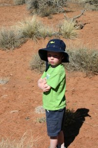 A four-year-old's stance on National Parks. . .