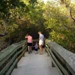 Desoto NMem boardwalk
