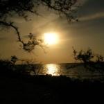 Desoto NMem sunset