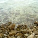 Desoto NMem Manattee River