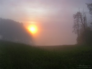 Shenandoah NP sun through fog