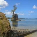 War in the Pacific NHP Agat Beach