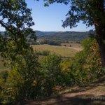 Natchez Trace Baker Bluff Overlook