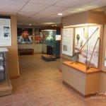 Ocmulgee Visitor Center