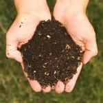 free compost to Newton Residents ILoveNewton.com