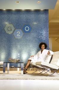 G20 custom mosaic logo, mosaics by ariel, Needham, Newton