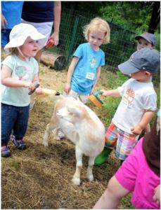 LexFarm's Summer Education Programs