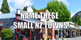 small nz towns