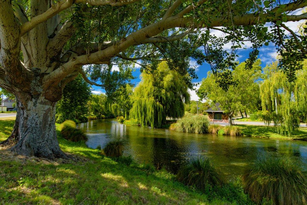 Christchurch vacation nz