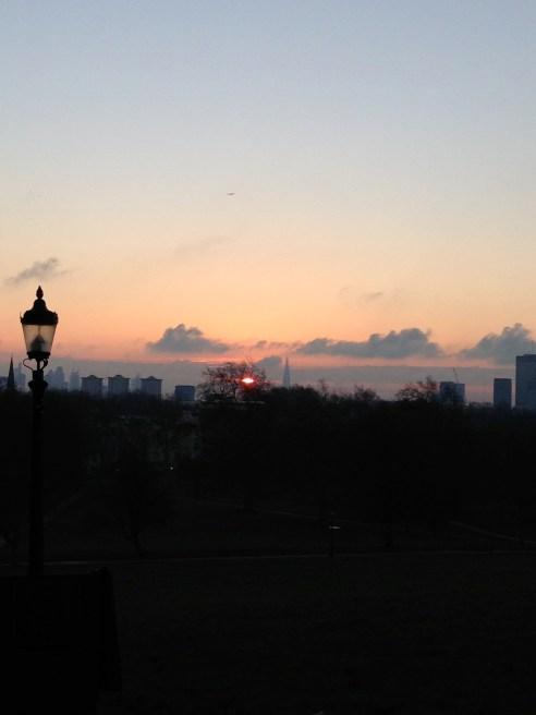 Primrose Sunrise