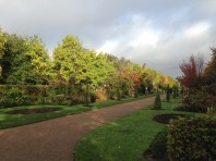 REGENTS PARK IN THE AUTUMN SUN