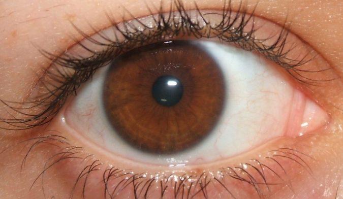brown eyes makeup tips
