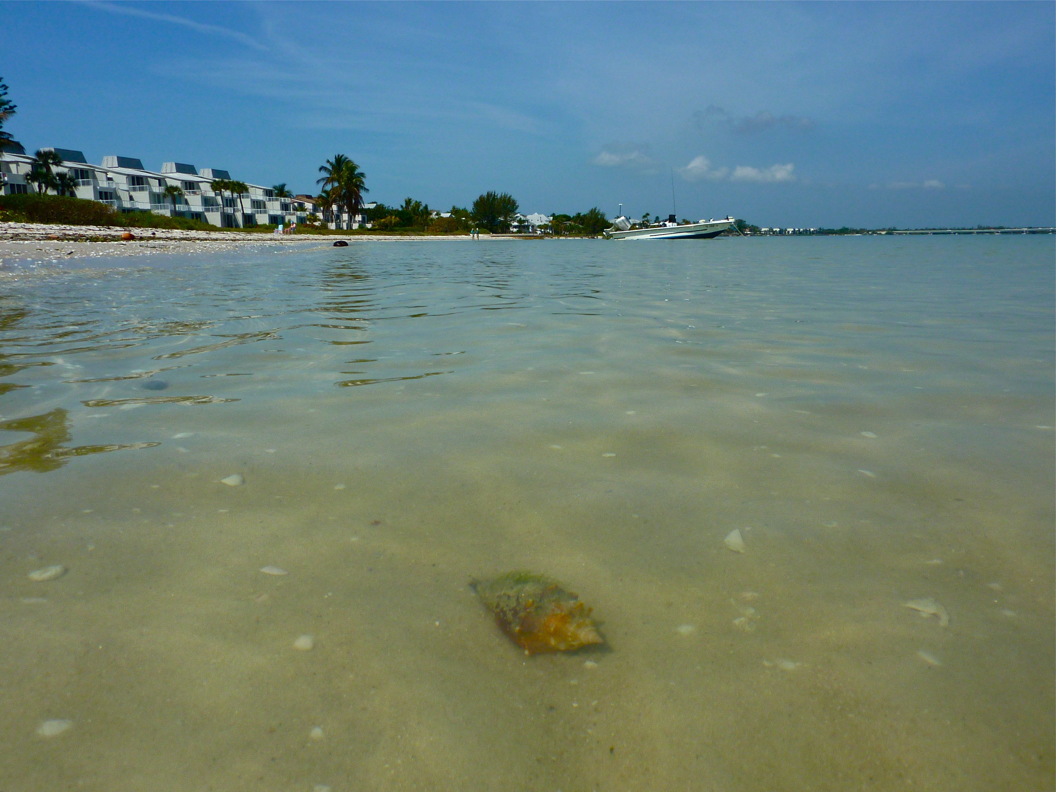 Crystal Clear Gulf Of Mexico Water