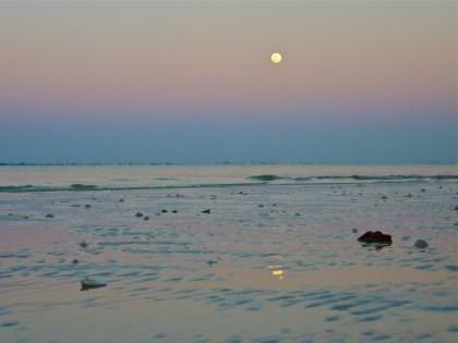 Sanibel full moon low tide
