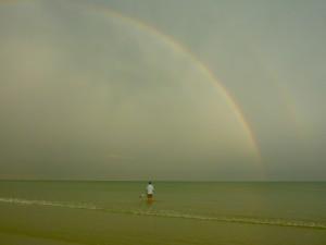 Shelling Rambo Under the Rainbow