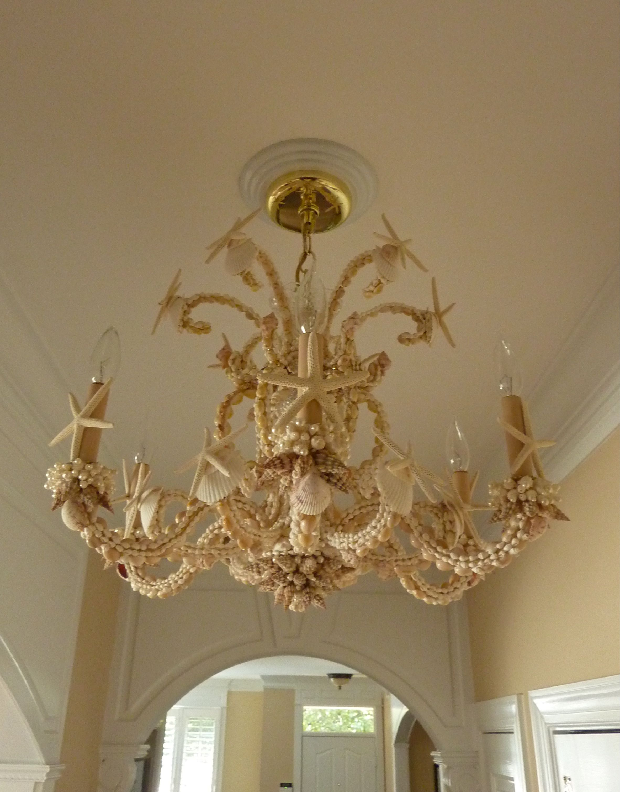Sarah s Seashell Chandelier