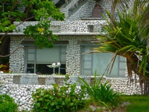 whelk and conch sea shells built a house on Pine Island Florida