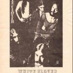 White Clover(pre-Kansas) with Steve Walsh