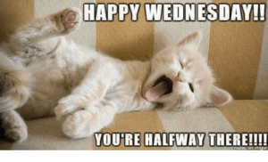 Funny Memes For Wednesday : Inspirational wednesday quotes with funny wednesday memes