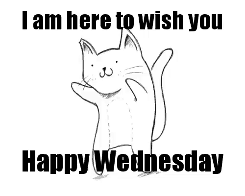 I'm Here To Wish You Happy Wednesday Funny Meme