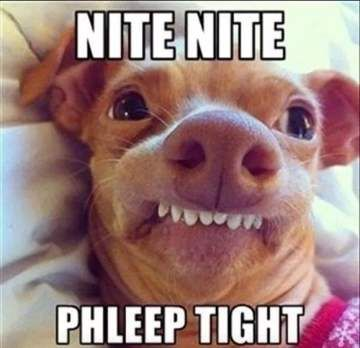 Phleep Tight Hilarious Good Night Memes For Her