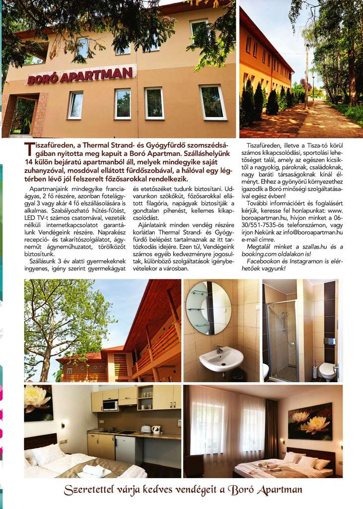 2018-Tiszato-02_Page_31