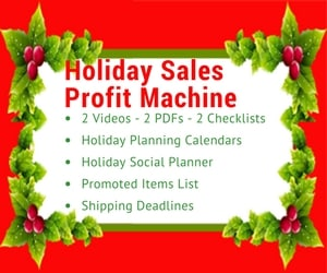 Holiday Sales Profit Machine