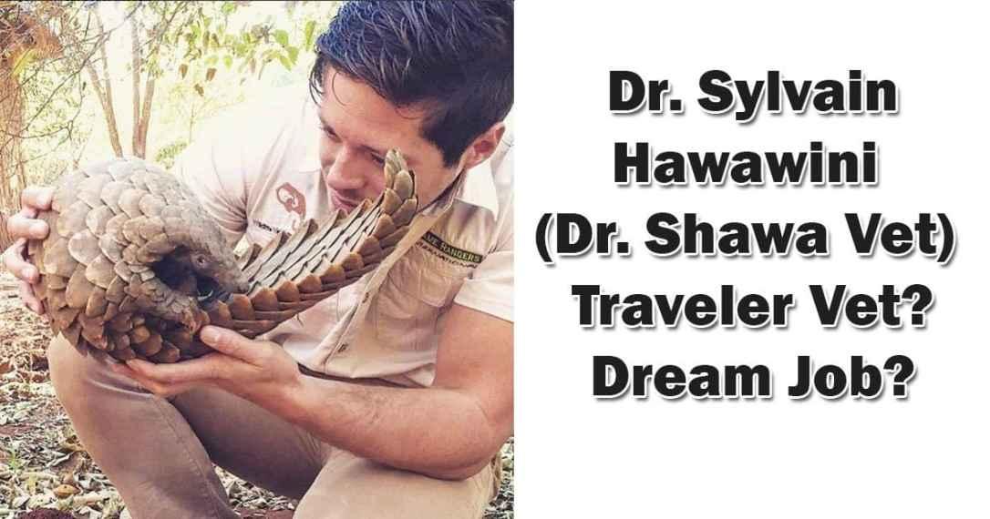 Dr Shawa vet pangolin