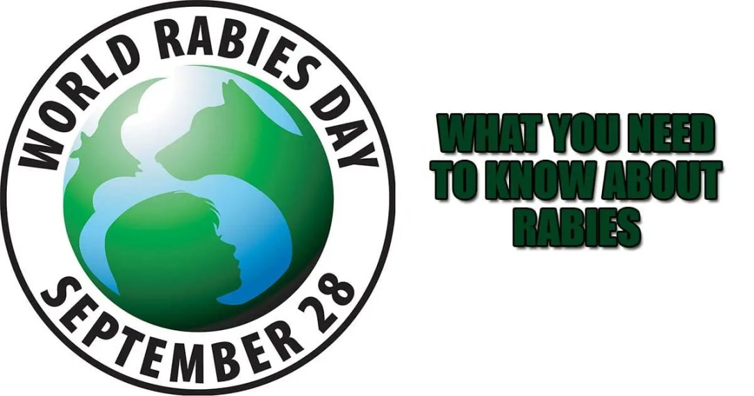 rabies What you need to know about Rabies world rabies day