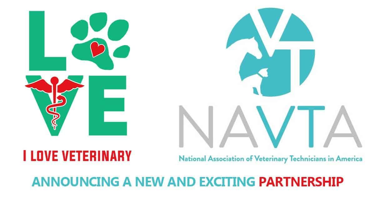 National Association Of Veterinary Technicians In America Navta