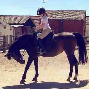 Harriet Long On A Horse