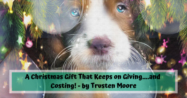 A Christmas Gift That Keeps on Giving….and Costing! - by Trusten Moore
