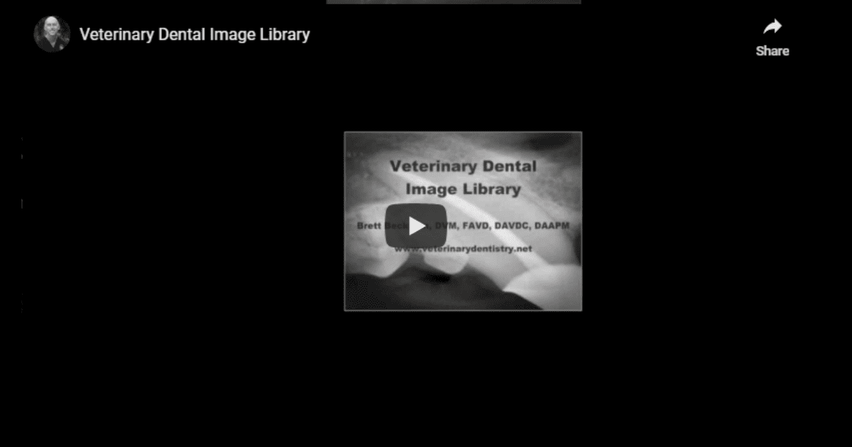 Veterinary Dental Image Library