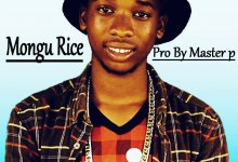 Photo of Pedro 197 – Mongu Rice (Prod. Master P)