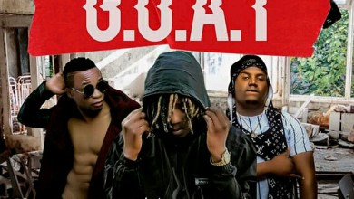 Photo of Sean Blin ft. Coziem x Stevo – G.O.A.T