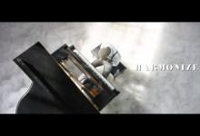 Photo of Harmonize – Nishapona (Official Music Video)