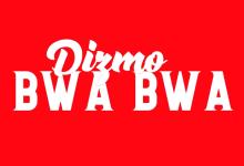 Photo of Dizmo – Bwa Bwa | The Showroom Session