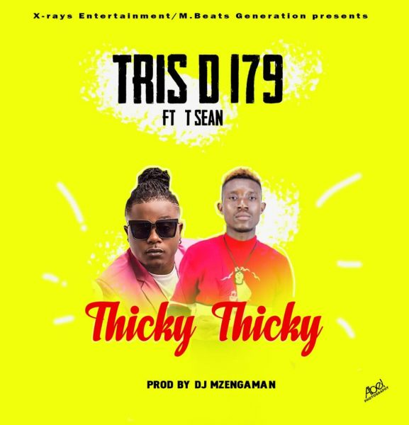 Tris D 179 ft. T Sean - Thicky Thicky