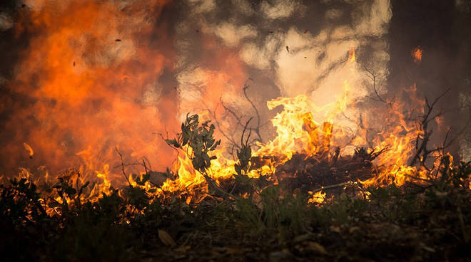 incendi-emilia-romagna