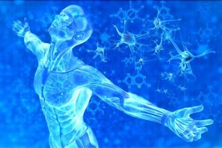 E se tutto quello ce conosciamo fosse semplicemente il frutto di un esperimento di laboratorio?