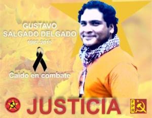 Fustavo Salgado Delgado 1982-2015