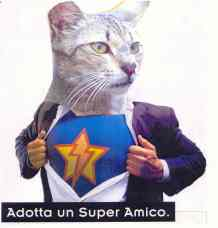 19-super_gatto