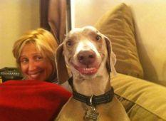 I-cani-ridono-eccome-FOTO-141